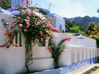 Bougainvillea-covered villas