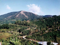 Terrazu Coffee Region