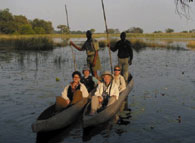 Okavango Safari