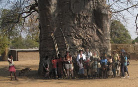 Visiting with Namibian villagers under the Baobob Tree