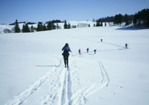 Yellowstone skiing